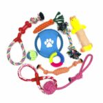 WeFine Puppy Dog Chew Toys Teething Training,10pcs Dog Rope Toys 100% Natural Cotton Rope for Small and Medium Dog